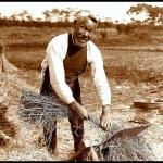 写真で見る大正時代の人間模様