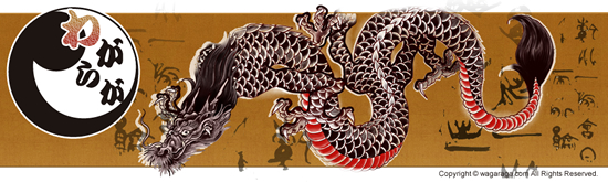 dragon121111