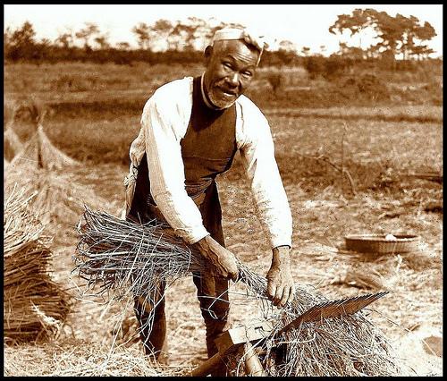 農作業をするおじいさん