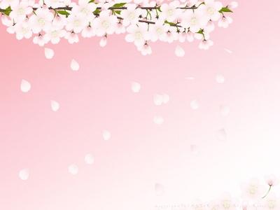 和柄ポータルブログ わがらが Blog Archive もうすぐ春ですね 壁紙変えてみませんか 桜の壁紙30枚